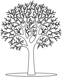 arbre_hiver